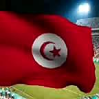 222147 flags tunisia