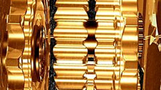 255667 gold wheels