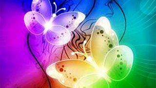 272732 cute butterflies