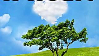 276152 a heart cloud
