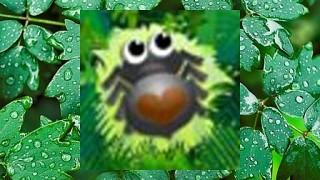 279755 bug match