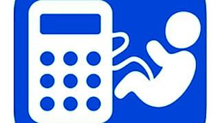 289073 pregnancy calculator