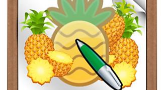397143 pen a pinapple