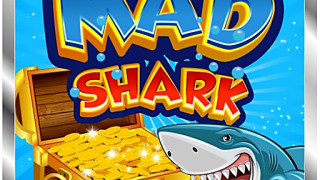 426991 mad shark
