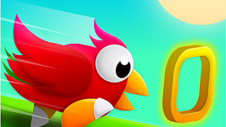434098 birds run unknown