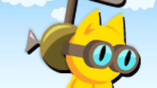 436312 heli cat unknown