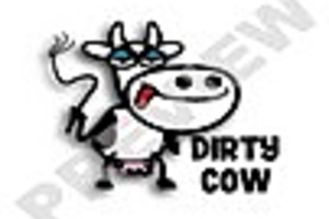 191038 dirty cow