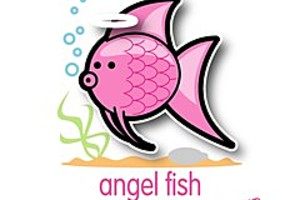 204023 angel fish
