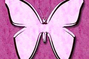 210366 butterfly
