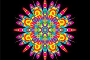 210439 rainbow flower