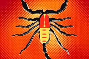 210448 scorpion