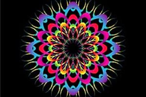 210464 spyro flower