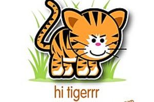 211980 hi tigerrr