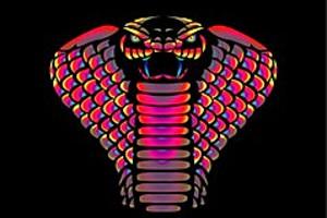 252766 cobra