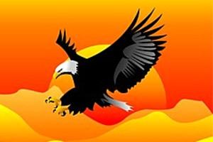 252829 eagle landing