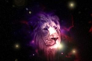 252898 lion spirit