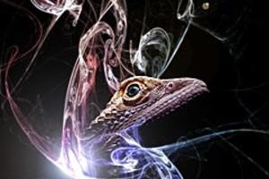 252900 lizard spirit
