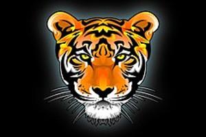 252996 tiger head
