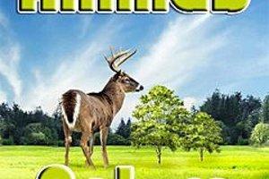 275198 animals nature