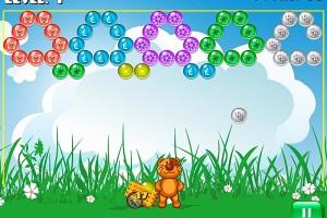 278153 bubble meadow
