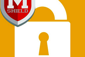 285737 password manager pro