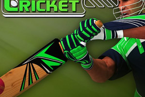 397248 batter challenge cricket