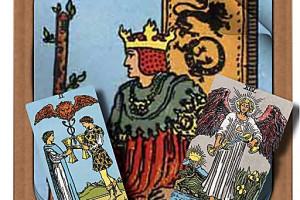 402664 tarot readings