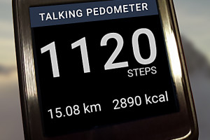 424517 talking pedometer