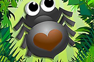 443500 bug match