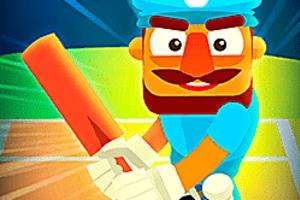 443568 cricket hero