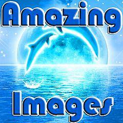 275168 amazing images