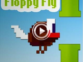 279879 floppy fly