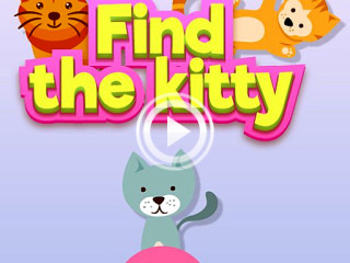 298985 find the kitty