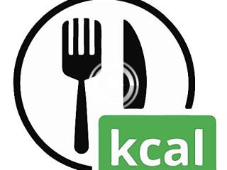 403909 eaten calorie tracker