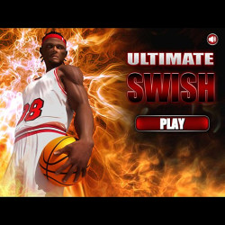 288019 ultimate swish basket ball