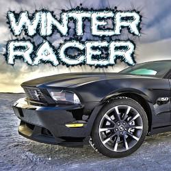 289043 winter racer