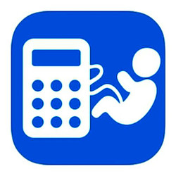289073 pregnancy calculator