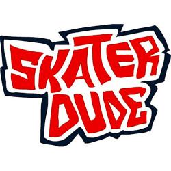 402348 skater dude