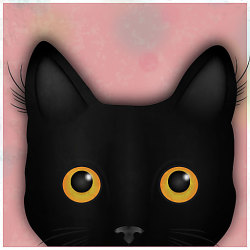 436463 cat maze unknown