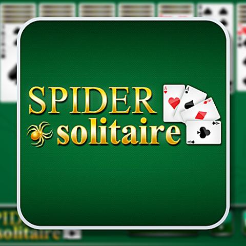 455731 spider solitaire