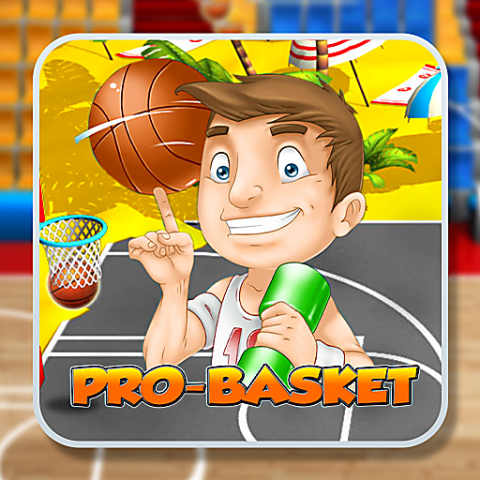 455813 pro basket