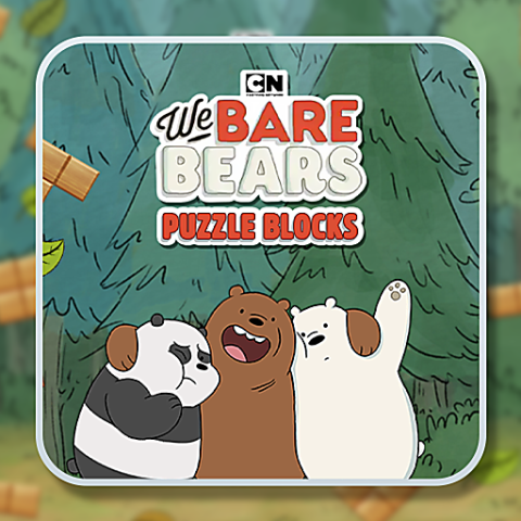 455943 we bare bears blocks